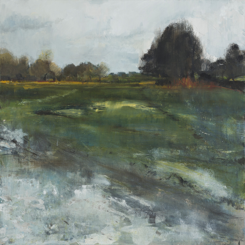 Parkland, January, Sheffield Park, £1550, Oil, graphite, charcoal and pastel on linen, 60 x 60cm
