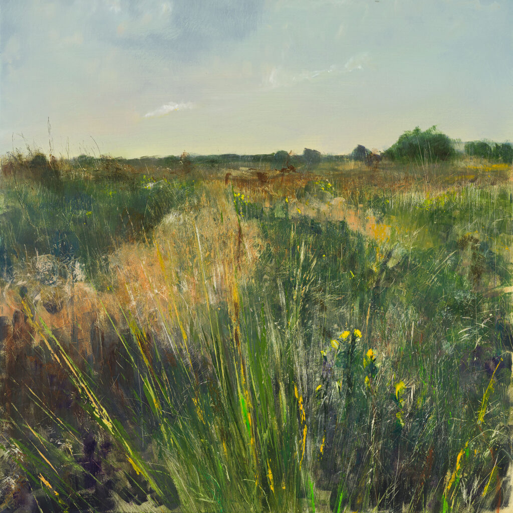 Through The Gorse, Ashdown Forest, £1500, Oil, graphite, charcoal and pastel on board, 61 x 61cm